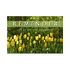 Yellow Tulips Postcard