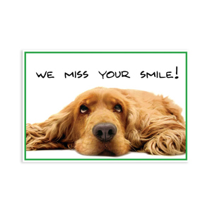 Dog Miss Your Smile Postcard