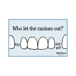 Canines Postcard